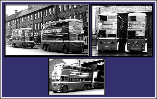 More SA Trolleys Collage