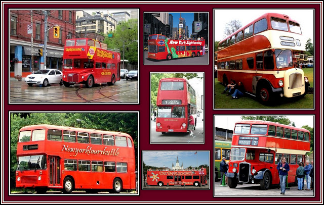 Not all Red Buses are London Buses Collage