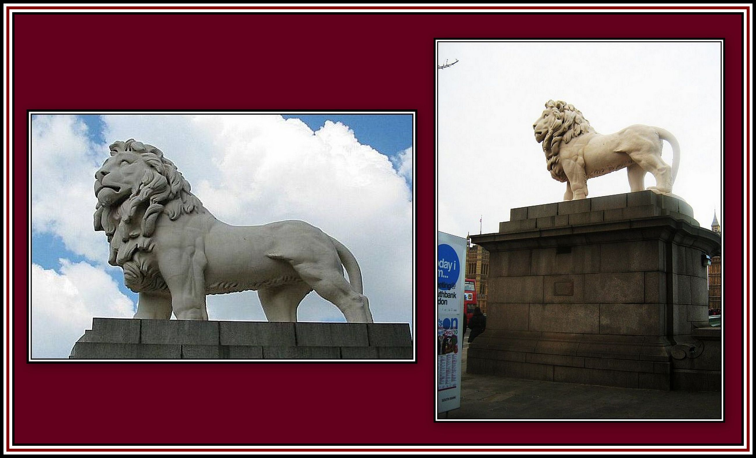 The Lion Collage