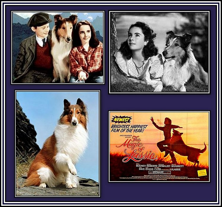 Lassie Collage