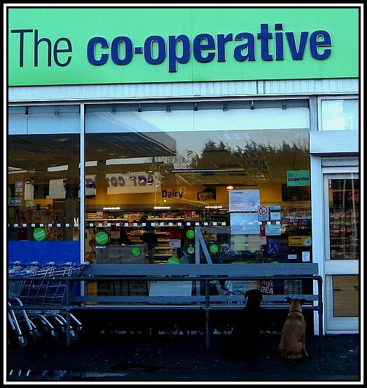 The_Co-operative_Tilehurst2