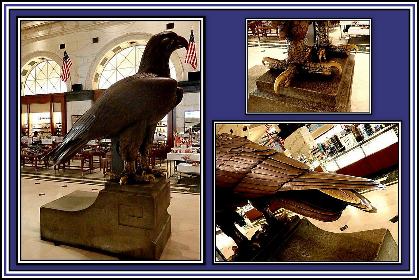 The Eagle Collage