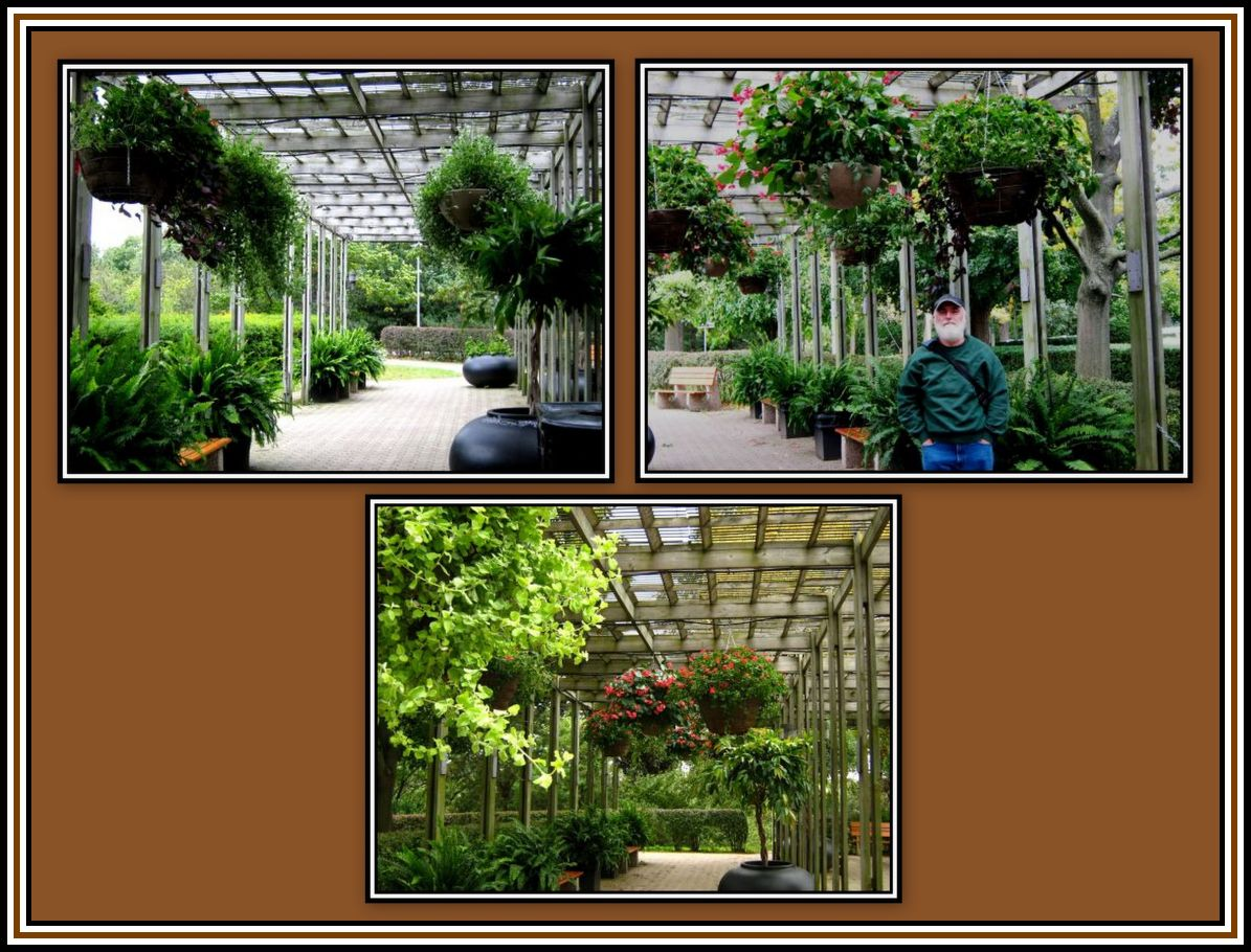 Pergola High Park Collage