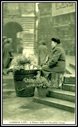 Flower Seller - Piccadilly Circus